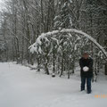 Winterwanderung - Dezember 2010