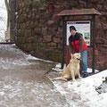 Wintertour mit Ben