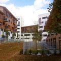 Jardin intérieur  - Espace protégé - Récupération des eaux de pluie