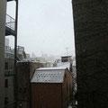 タンポポのベランダから見る景色も雪景色…