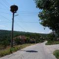 Typische Landstrasse im bulgarischen Hinterland