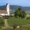 Bergkirche Hallau