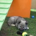 Und nun ein kleines Päuschen am 3.9.2010
