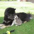 Spielen mit Oma am 23.05.2014