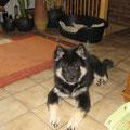Betty am 16.5.2012