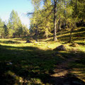 Taurista Trails