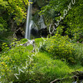 Wasserfall Bad Urach Nr.0453