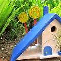 Houten Nestkastje voor Pindakaas pot, Nestkastje, thema, Grieks stijl  blauw-wit, Vogelhuisje bouwen, vogelhuisje pindakaas pot, huisje blauw-wit_11