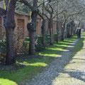 Französicher Garten in Celle