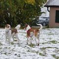 Zwei Schwestern im Schnee.