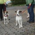 Debby und Distel-Emma