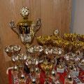 Pokale inkl. dem Walkensteiner Wanderpokal der bereits zum zweitenmal nach Sallapulka wanderte...