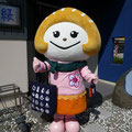 2013.9.1 ふかひれちゃん、ギャラリー縁に来てくれました!とってもかわいいですね♡
