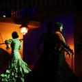 Flamenco en Vivo...   Parque Tivoli Benalmadena , Malaga