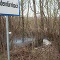 Kleinbrand im Windschutz - 31.03.2012