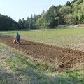 その間に、田んぼで苗を育てる苗代を作ります。