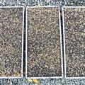 種を薄播きにする事で、空気の通りを良くして蒸れを防ぎ、病気が発生しずらい環境で大苗になる迄育苗することが可能になるのです。