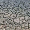 冬の間は、田んぼを乾かし「乾土効果」を促すことで、好気性の菌を増やし、稲の生育に良い環境作りをします。