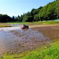 乾いた田んぼに、水が入り出しました。