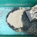 次に、この「自家製培養土」と「燻炭」を1:4の比率で混ぜ、よく撹拌したら「苗土」の出来上がり。