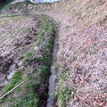 田んぼの水はけを良くするために、水路の整備をしておきます。