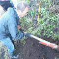 手際よく植樹が進行