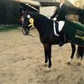 Johanna Saalmann mit ihrem Pferd Fürst Romanow