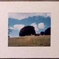 大滝栄子:サマセットの雲