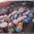 小野忠知/雨のフローラ