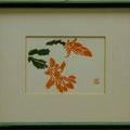 池田美代:アロエの花