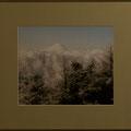 中嶋道芙:富士山と樹氷