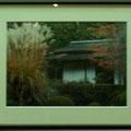門田敏男:植物と景色⑥ 詩仙堂