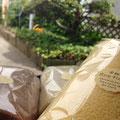 米粉ロール(プレーン、明日葉、チョコ¥)