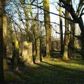 Judenfriedhof, Anholt