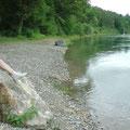 Beruhigung; hinter dem Rheinfall wird der Rhein sehr ruhig und idyllisch