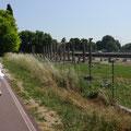 Aquileia - römische Ruinen (Forum)
