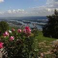Blick auf das Rheintal vom Niederwalddenkmal über Rüdesheim