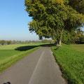 Bei Düsseldorf - auf dieser landschaftlich schönen Strecke fand am Folgetag ein Halbmarathon bis Duisburg statt