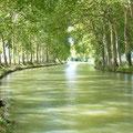 canal du Midi près des Gites des Camparros à Nailloux