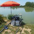 pêche au Domaine des Oiseaux à Mazère près des Gites des Camparros à Nailloux