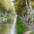 piste cyclable du canal du Midi près des Gites des Camparros à Nailloux