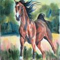 """Серия """"Кони"""" Акварель 21х30 см    Series """"Horses"""" Water color of 21х30 cm"""