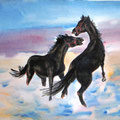 "Серия ""Кони"" Акварель 30х40 см    Series ""Horses"" Water color of 30х40 cm"