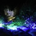 平湯大滝結氷祭り 平湯大滝ライトアップ
