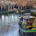 A proximité du Canal du Midi