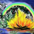 Feuer und Regenbogen 2013