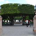 Jardin Parroque