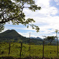 Von El Rama in Richtung Karibik - Weideland wohin das Auge blickt-