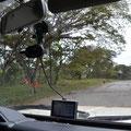 Die sorgen für die sauberen Straßen (die hier in Top Zustand sind)