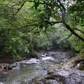 Schöne Landschaft im Regen und